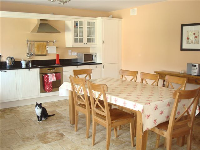 The Barn, Decoy Country Cottages, Kitchen, Luxury self catering accommodation in Meath